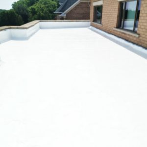 Polyurethane Roof System